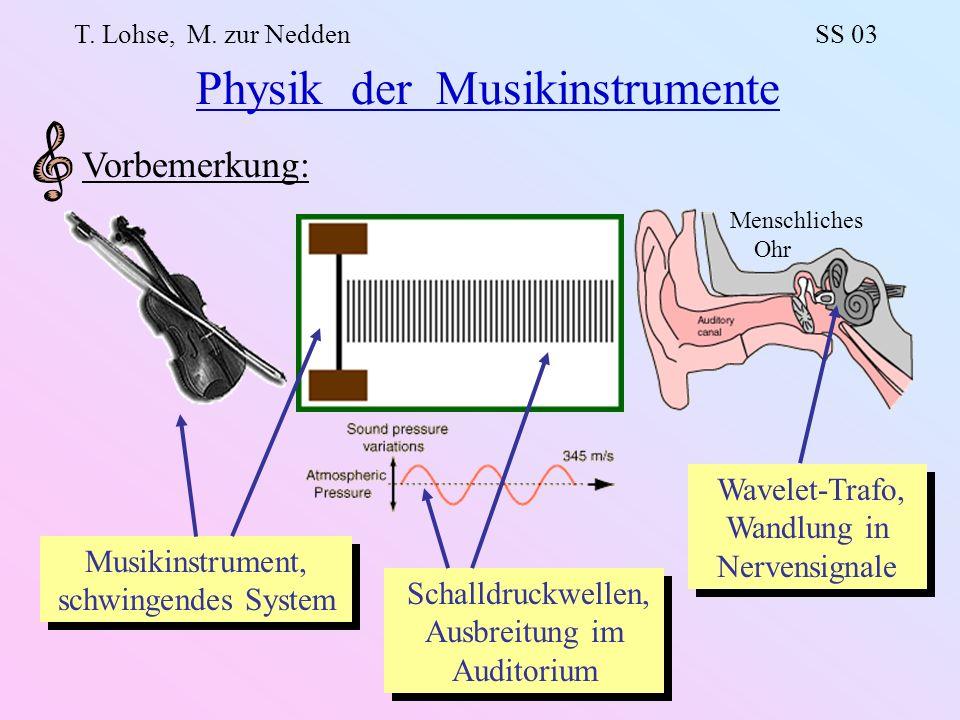 Physik der Musikinstrumente