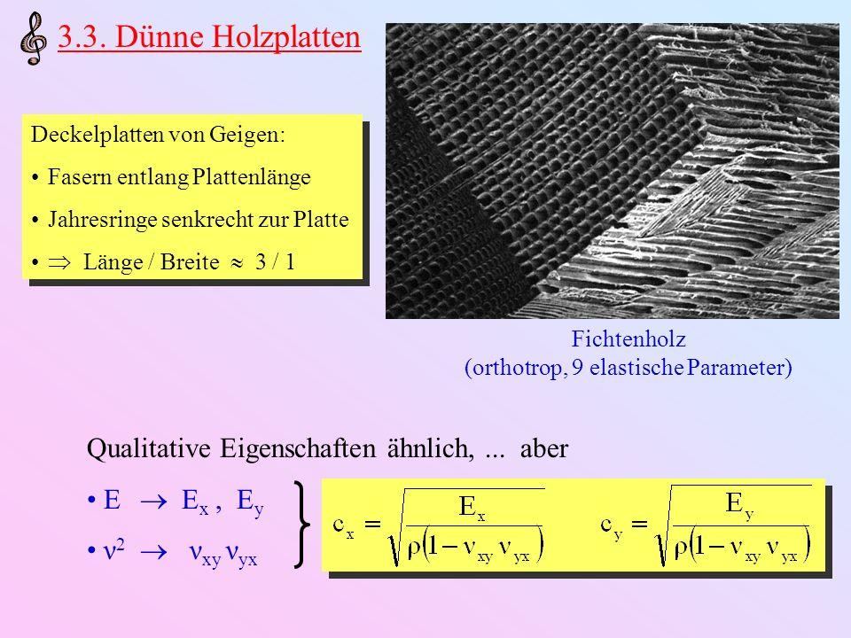 (orthotrop, 9 elastische Parameter)