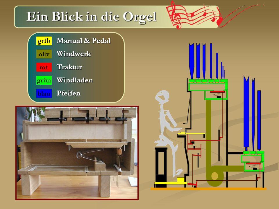Ein Blick in die Orgel Manual & Pedal Windwerk Traktur Windladen