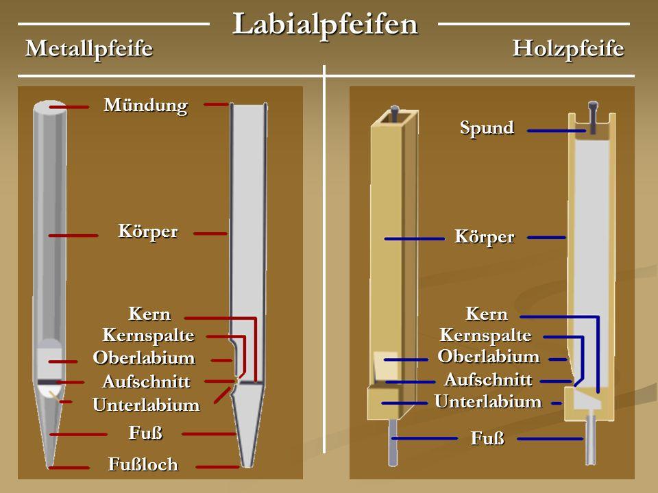 Labialpfeifen Metallpfeife Holzpfeife Mündung Spund Körper Körper Kern