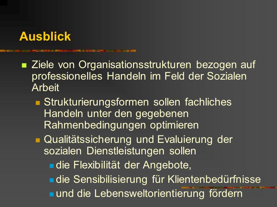 Ausblick Ziele von Organisationsstrukturen bezogen auf professionelles Handeln im Feld der Sozialen Arbeit.