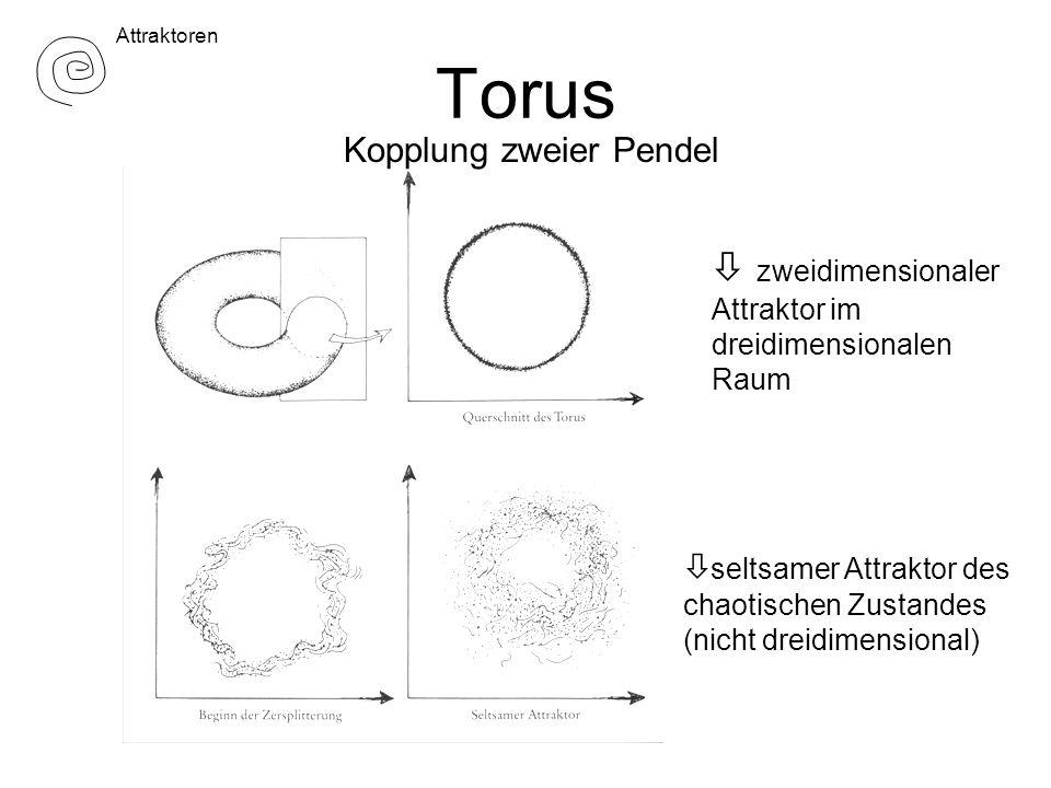 Torus  zweidimensionaler Kopplung zweier Pendel