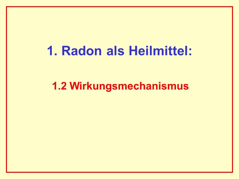 1. Radon als Heilmittel: 1.2 Wirkungsmechanismus AAAAAAAAA BBBBBBBBBB