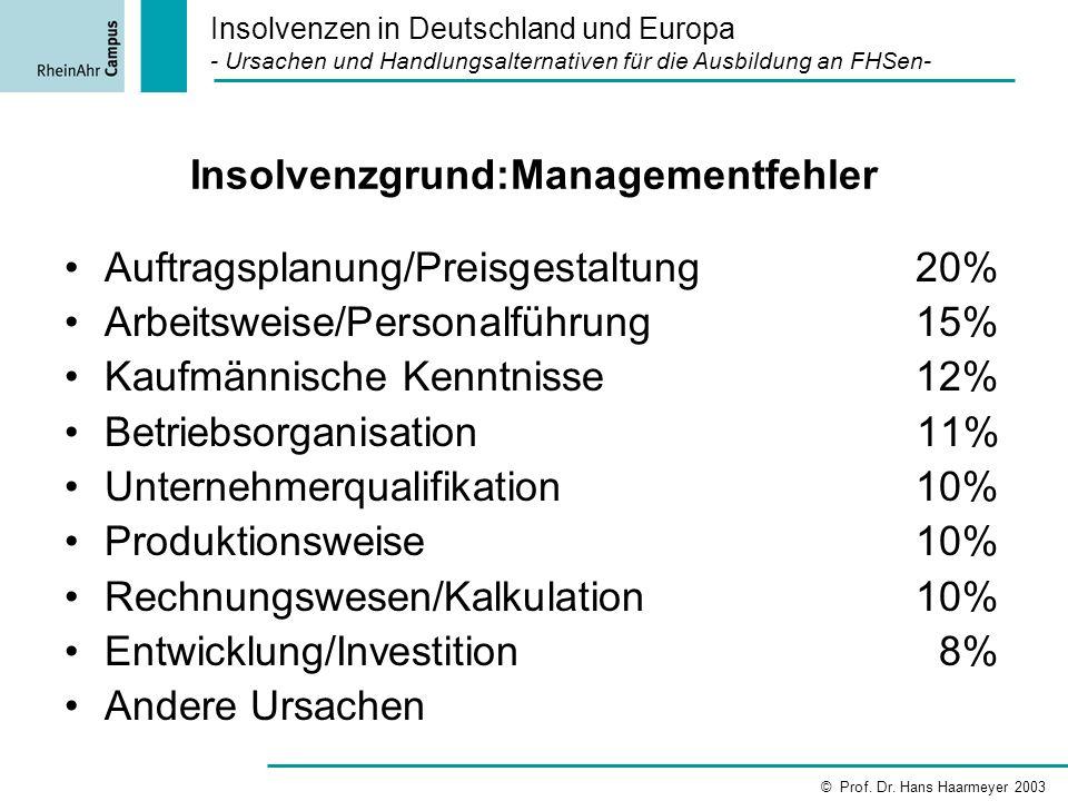 Insolvenzgrund:Managementfehler