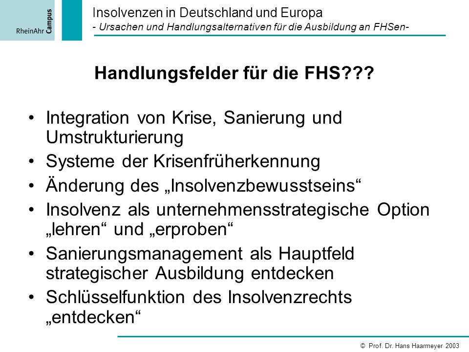 Handlungsfelder für die FHS