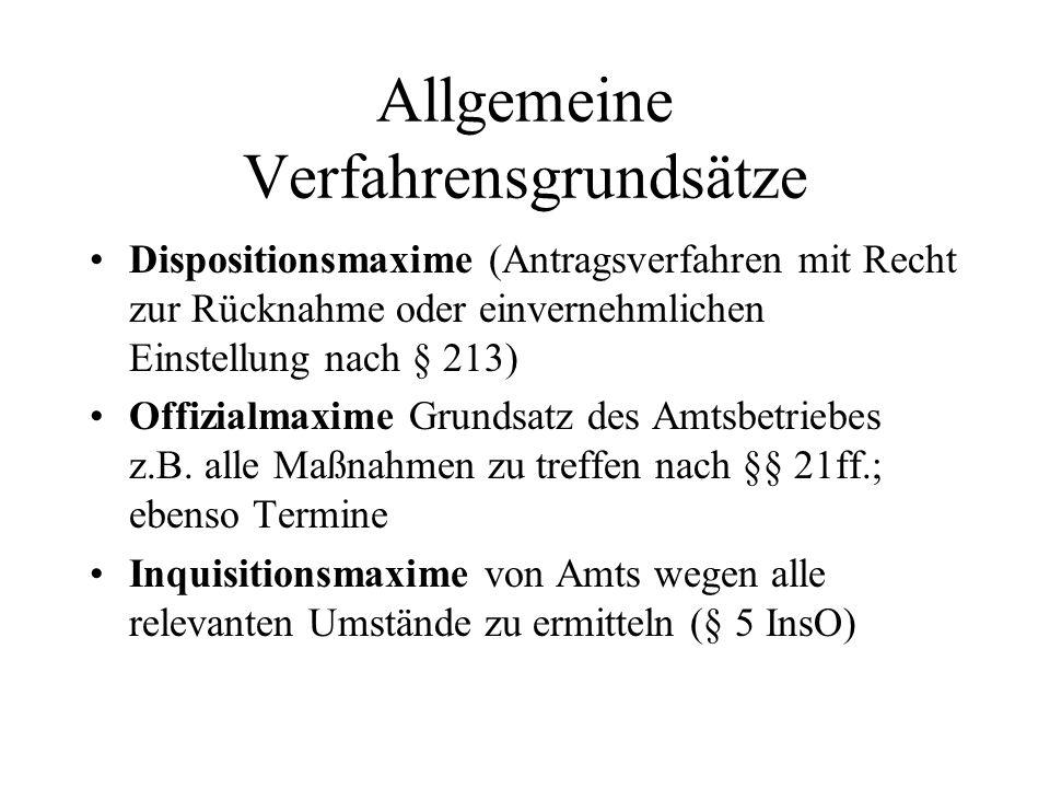 Allgemeine Verfahrensgrundsätze