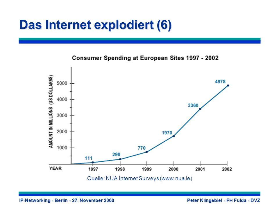 Das Internet explodiert (6)