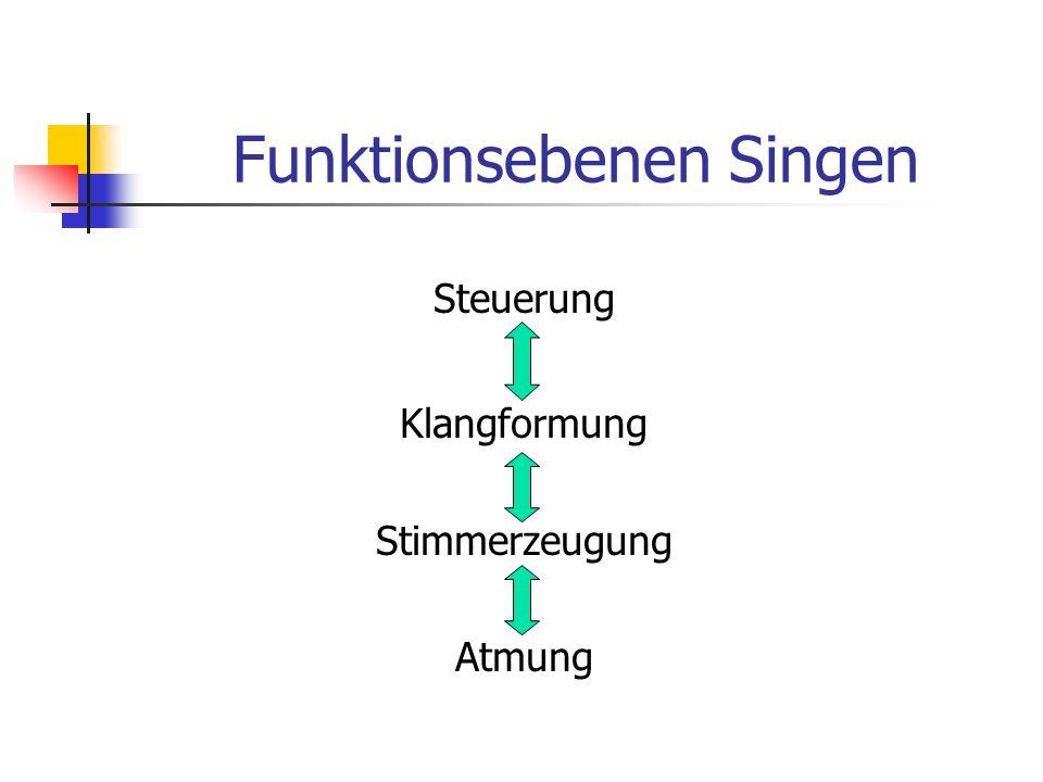 Funktionsebenen Singen