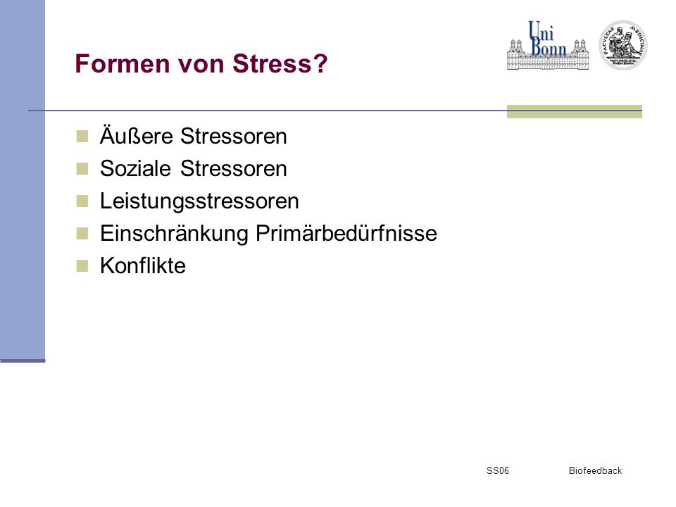 Formen von Stress Äußere Stressoren Soziale Stressoren