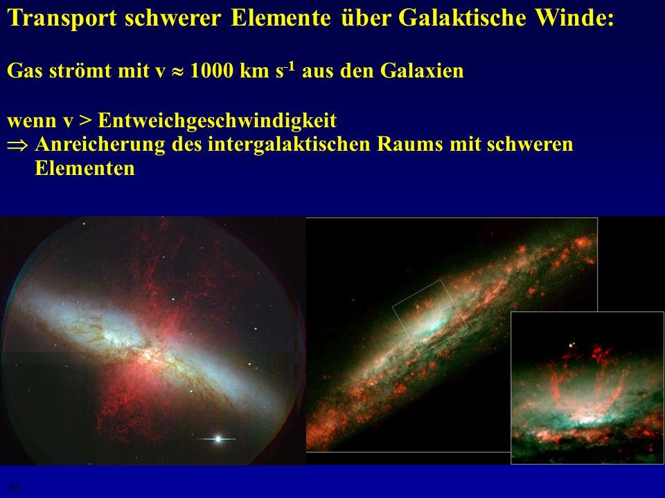 Transport schwerer Elemente über Galaktische Winde: