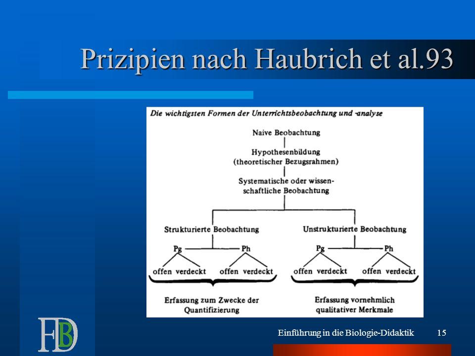 Prizipien nach Haubrich et al.93