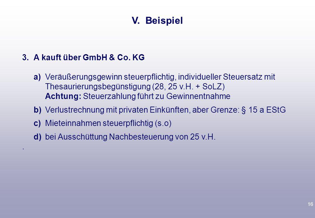V. Beispiel 3. A kauft über GmbH & Co. KG.