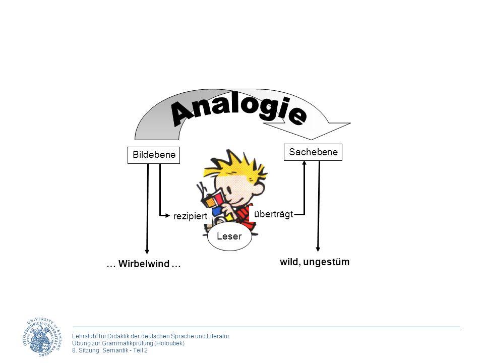 Analogie Sachebene Bildebene überträgt rezipiert Leser wild, ungestüm