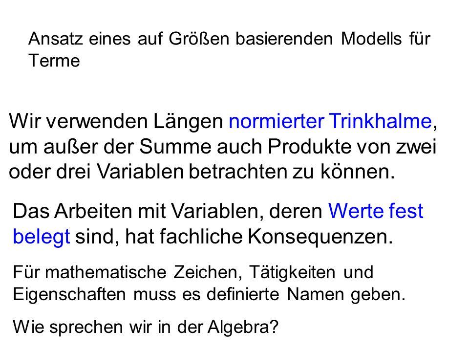 Ansatz eines auf Größen basierenden Modells für Terme