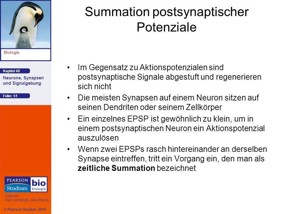 Summation postsynaptischer Potenziale