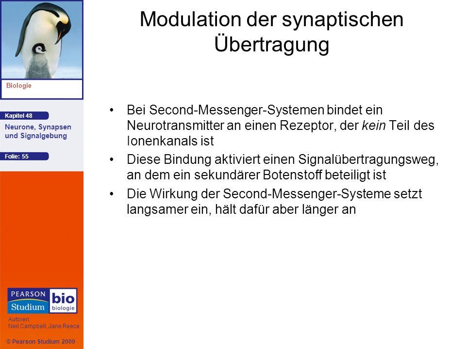 Modulation der synaptischen Übertragung