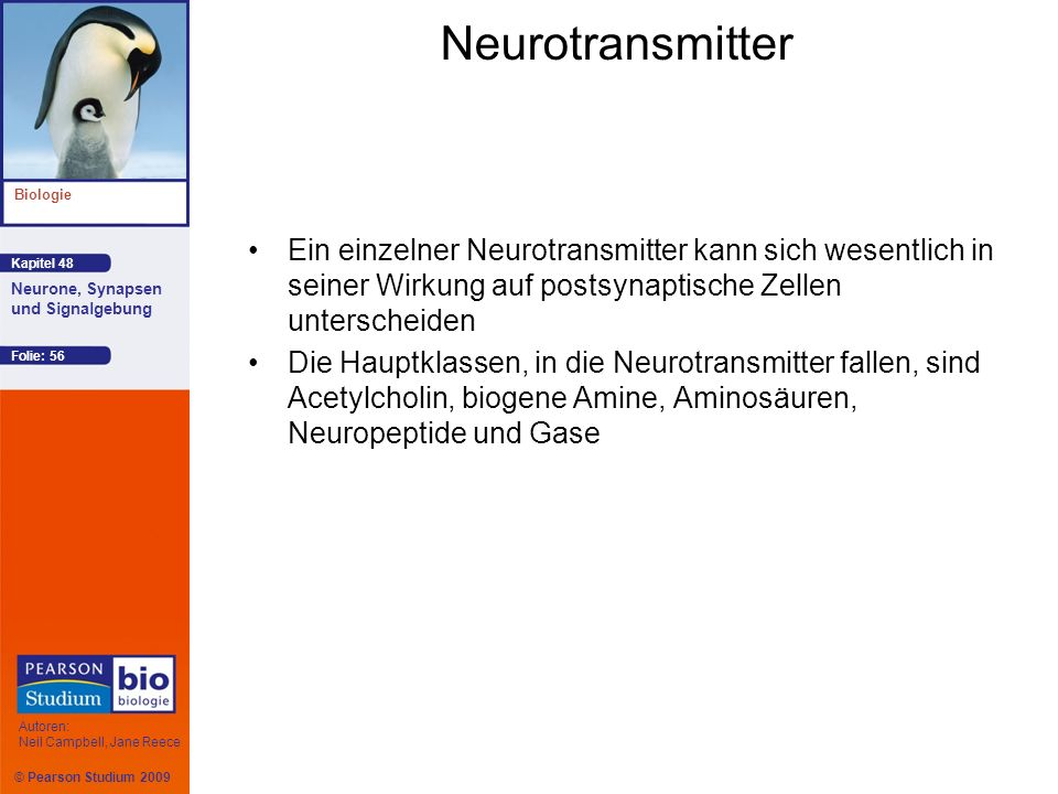 Neurotransmitter Ein einzelner Neurotransmitter kann sich wesentlich in seiner Wirkung auf postsynaptische Zellen unterscheiden.