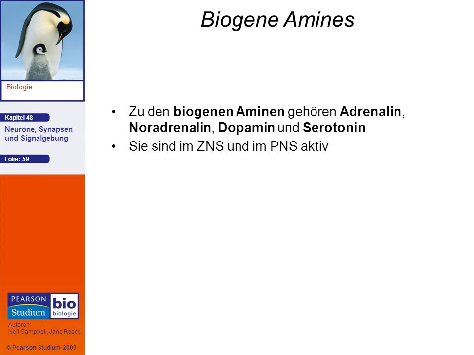 Biogene Amines Zu den biogenen Aminen gehören Adrenalin, Noradrenalin, Dopamin und Serotonin.