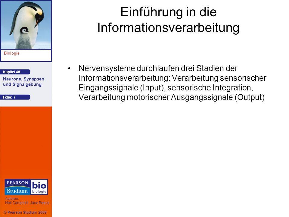 Einführung in die Informationsverarbeitung