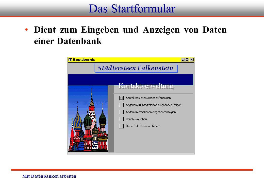 Das Startformular Dient zum Eingeben und Anzeigen von Daten einer Datenbank.