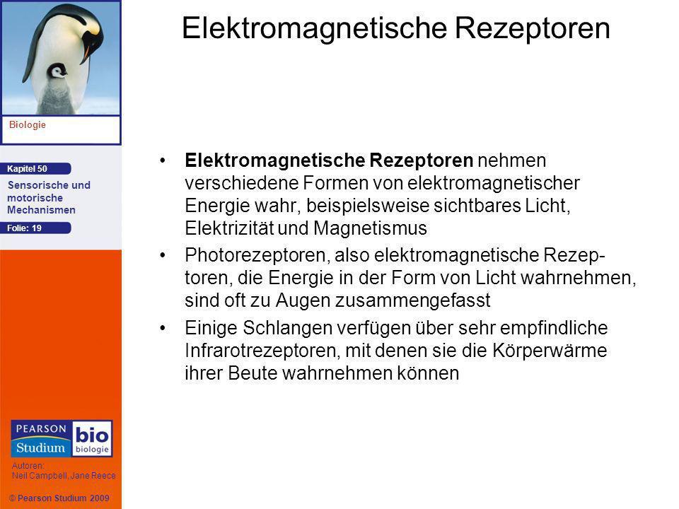 Elektromagnetische Rezeptoren