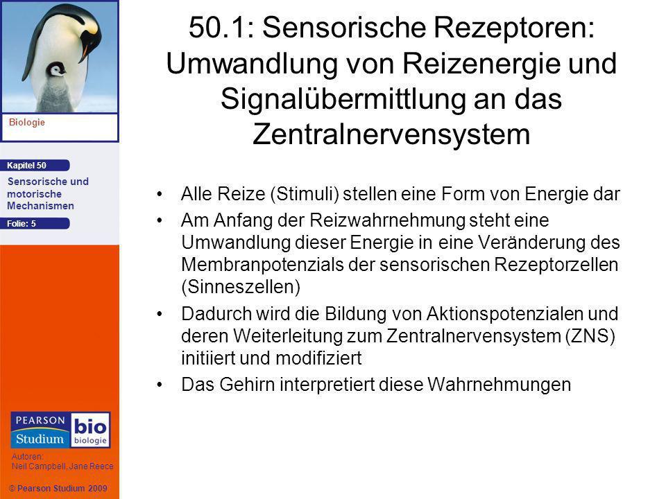 50.1: Sensorische Rezeptoren: Umwandlung von Reizenergie und Signalübermittlung an das Zentralnervensystem