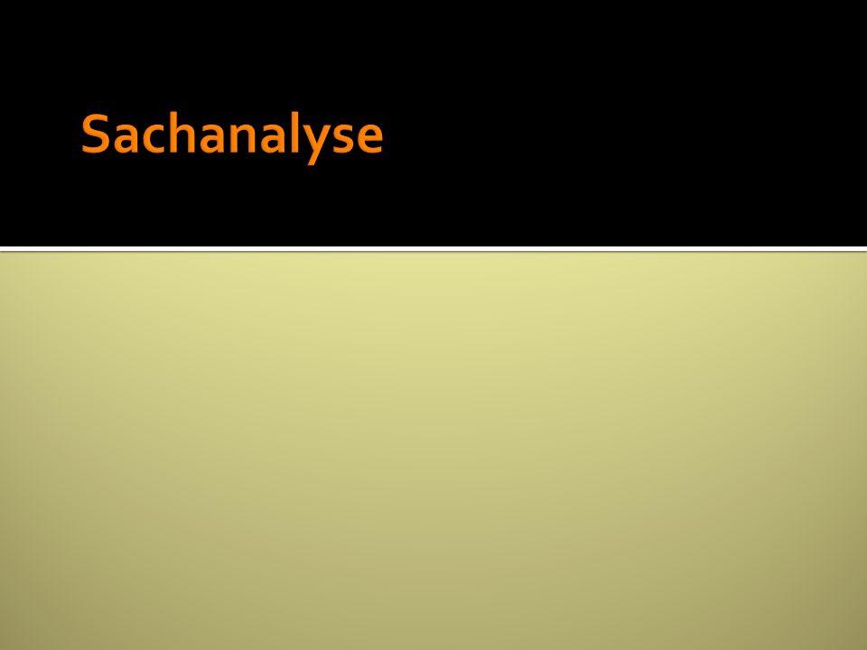 Sachanalyse