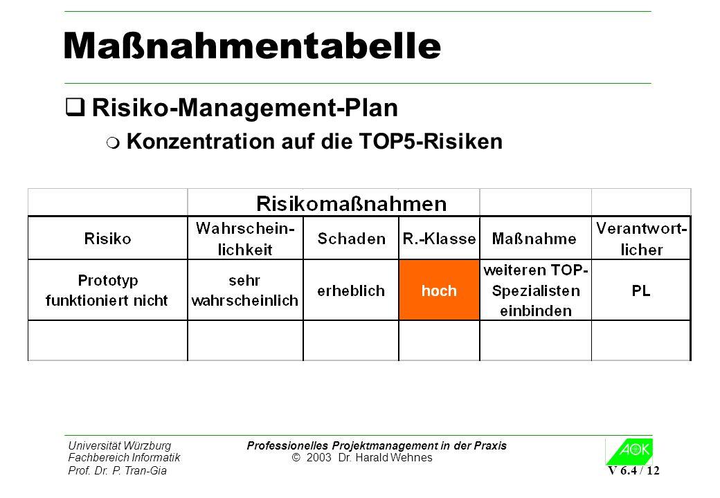 Maßnahmentabelle Risiko-Management-Plan