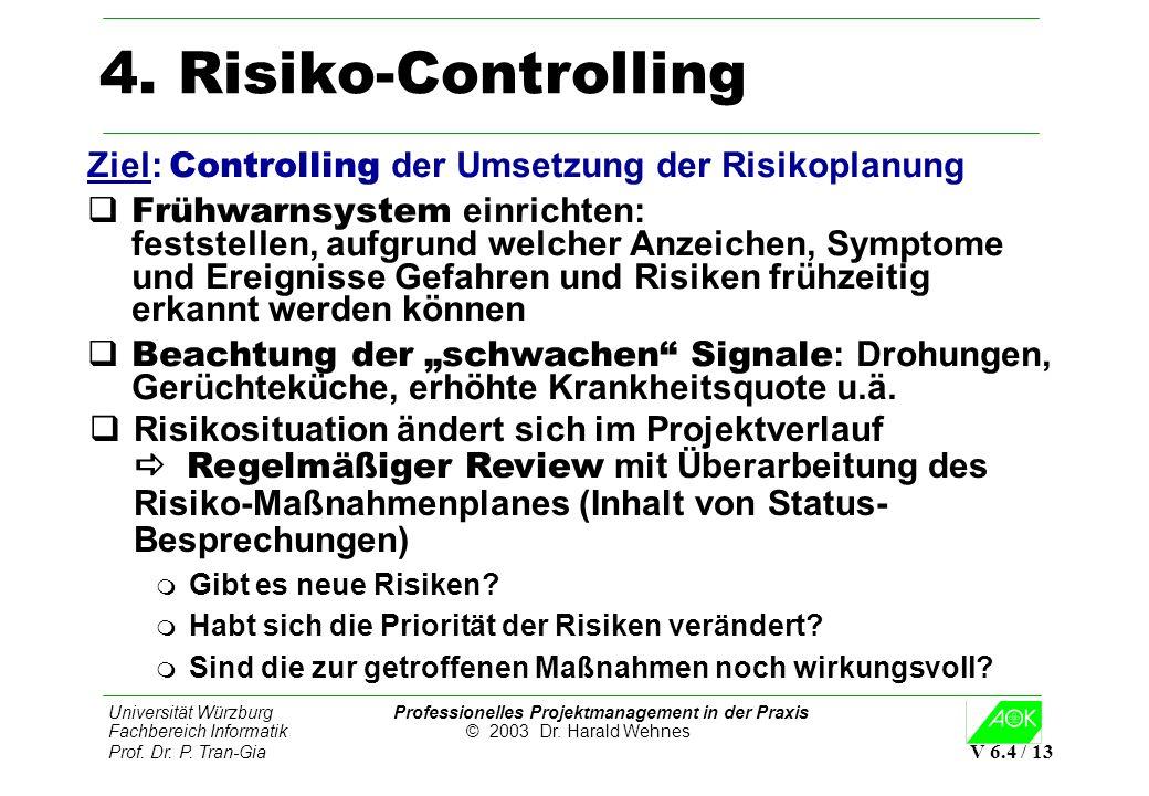 4. Risiko-Controlling Ziel: Controlling der Umsetzung der Risikoplanung.