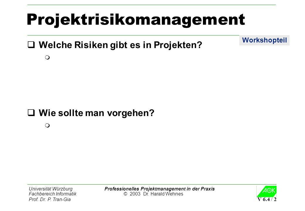 Projektrisikomanagement