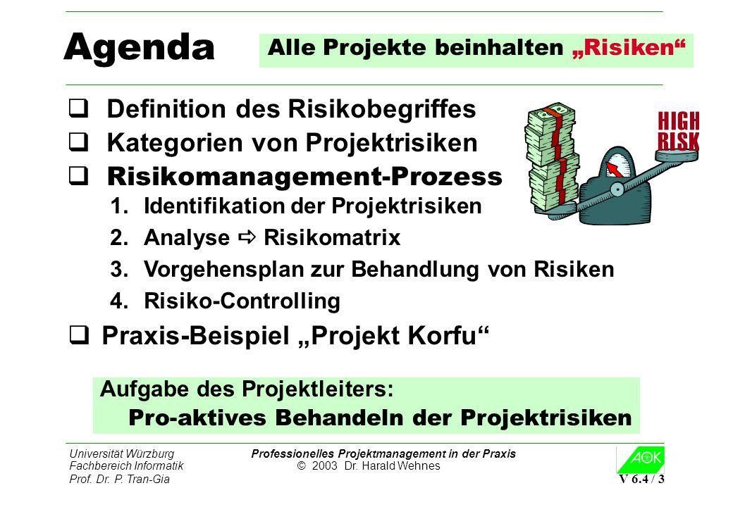 """Alle Projekte beinhalten """"Risiken"""