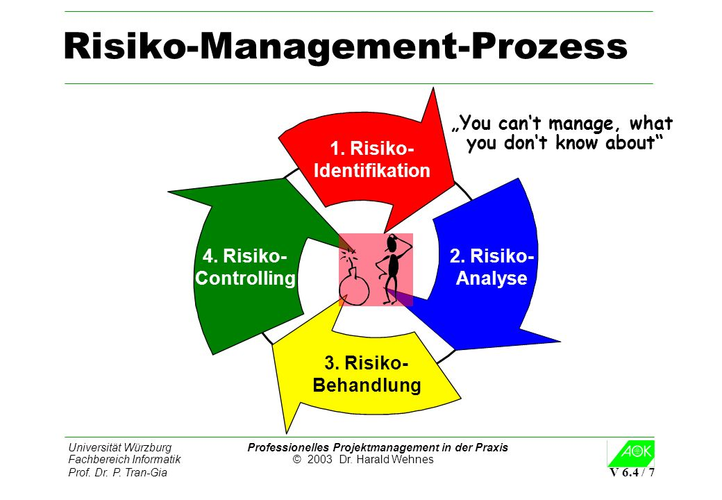 Risiko-Management-Prozess