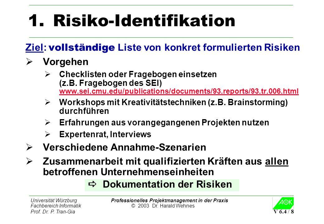 Risiko-Identifikation
