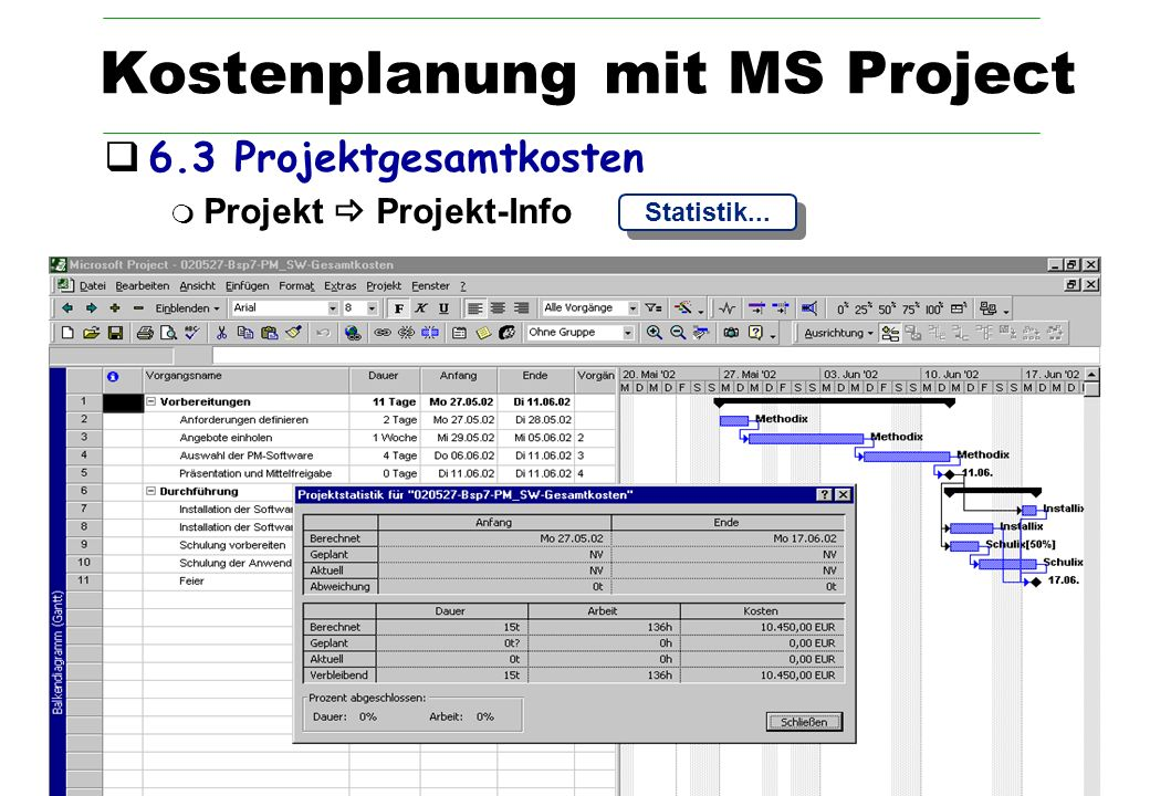 Kostenplanung mit MS Project