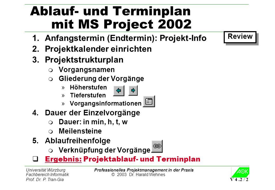 Ablauf- und Terminplan mit MS Project 2002