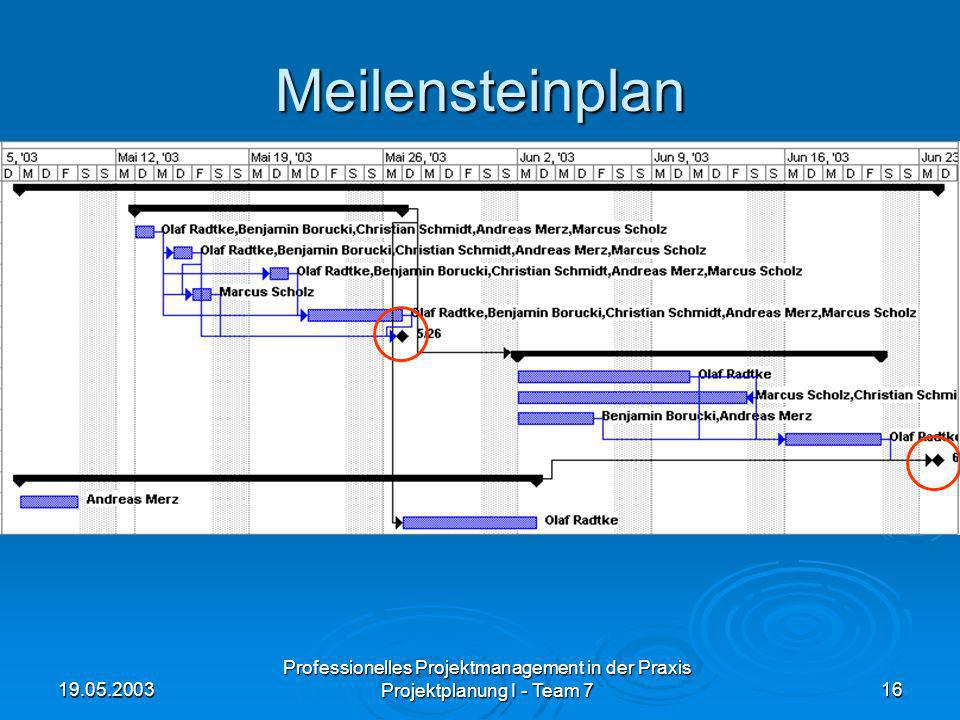 Meilensteinplan 19.05.2003. Professionelles Projektmanagement in der Praxis.