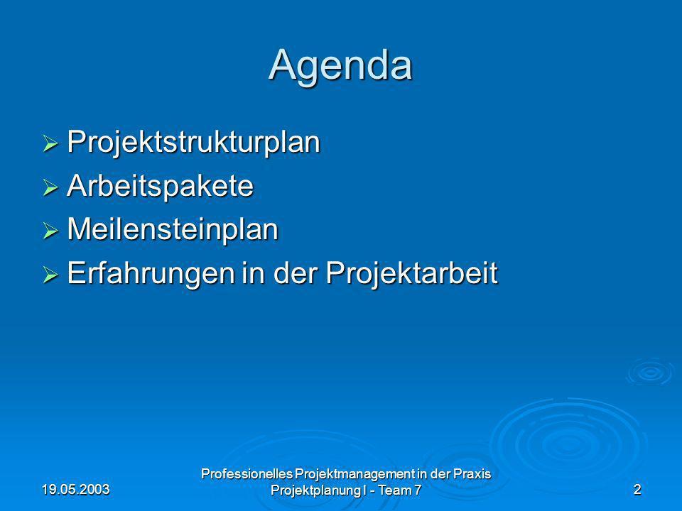 Agenda Projektstrukturplan Arbeitspakete Meilensteinplan