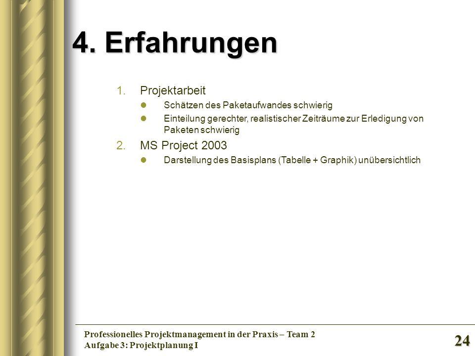4. Erfahrungen Projektarbeit MS Project 2003