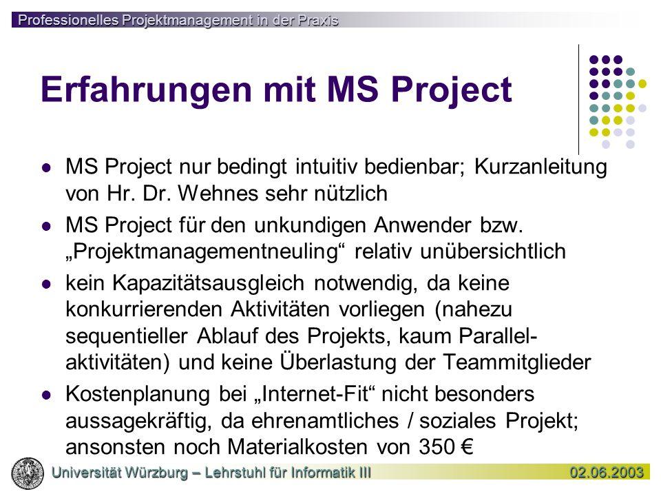 Erfahrungen mit MS Project