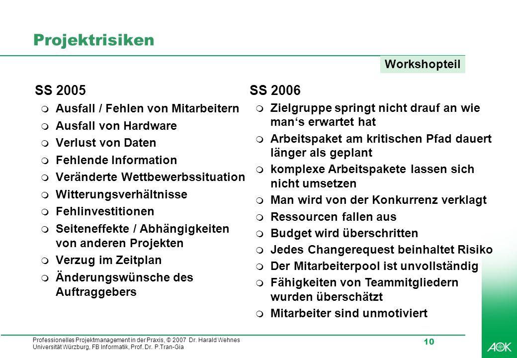 Projektrisiken SS 2005 SS 2006 Workshopteil