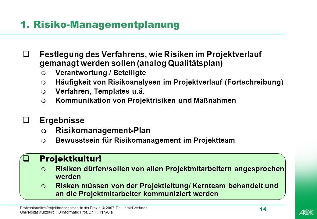 1. Risiko-Managementplanung