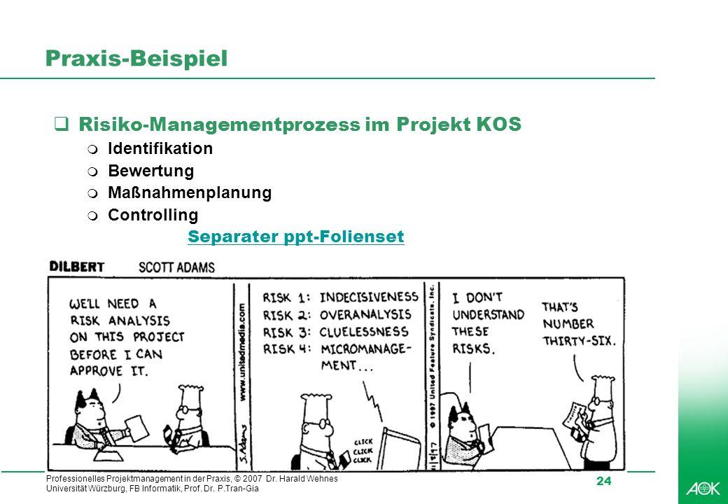 Praxis-Beispiel Risiko-Managementprozess im Projekt KOS Identifikation