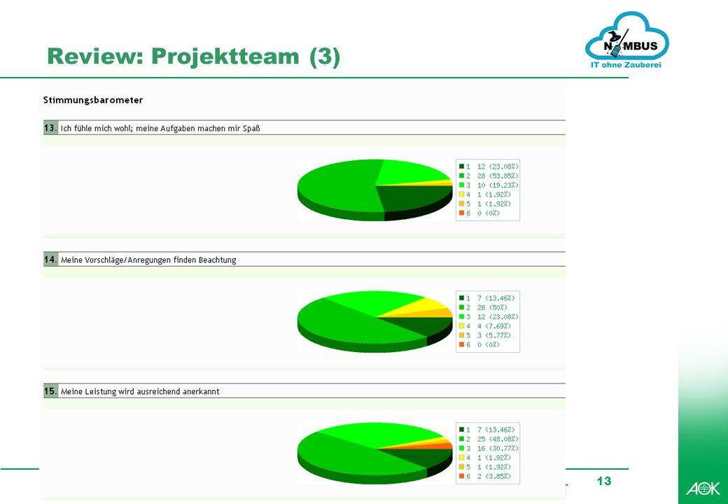Review: Projektteam (3)