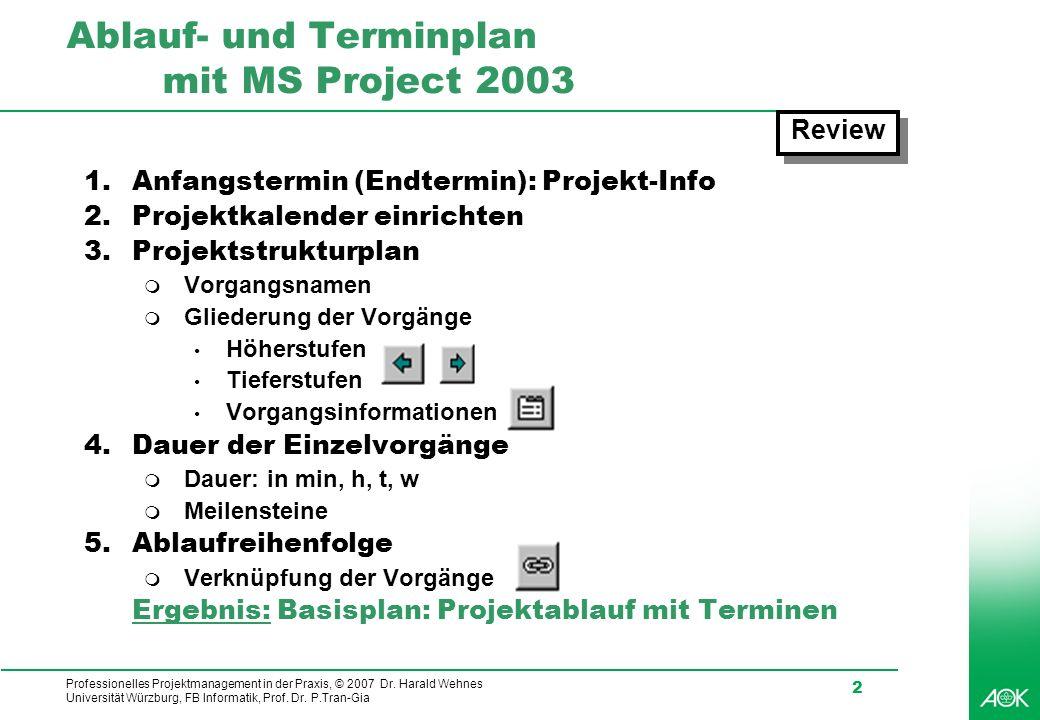 Ablauf- und Terminplan mit MS Project 2003