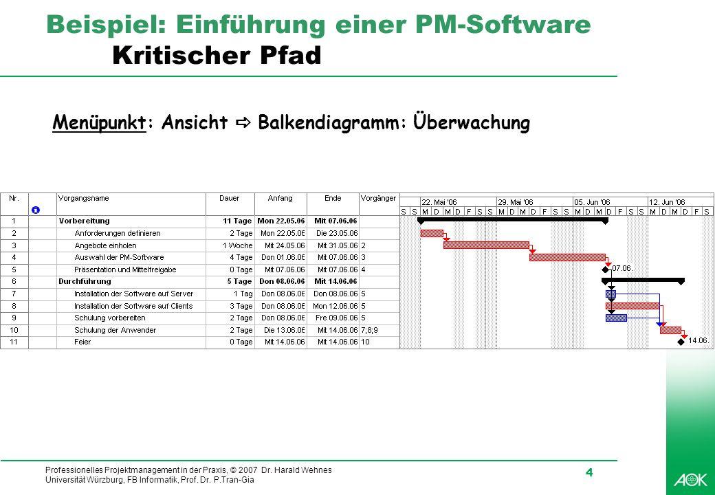 Beispiel: Einführung einer PM-Software Kritischer Pfad