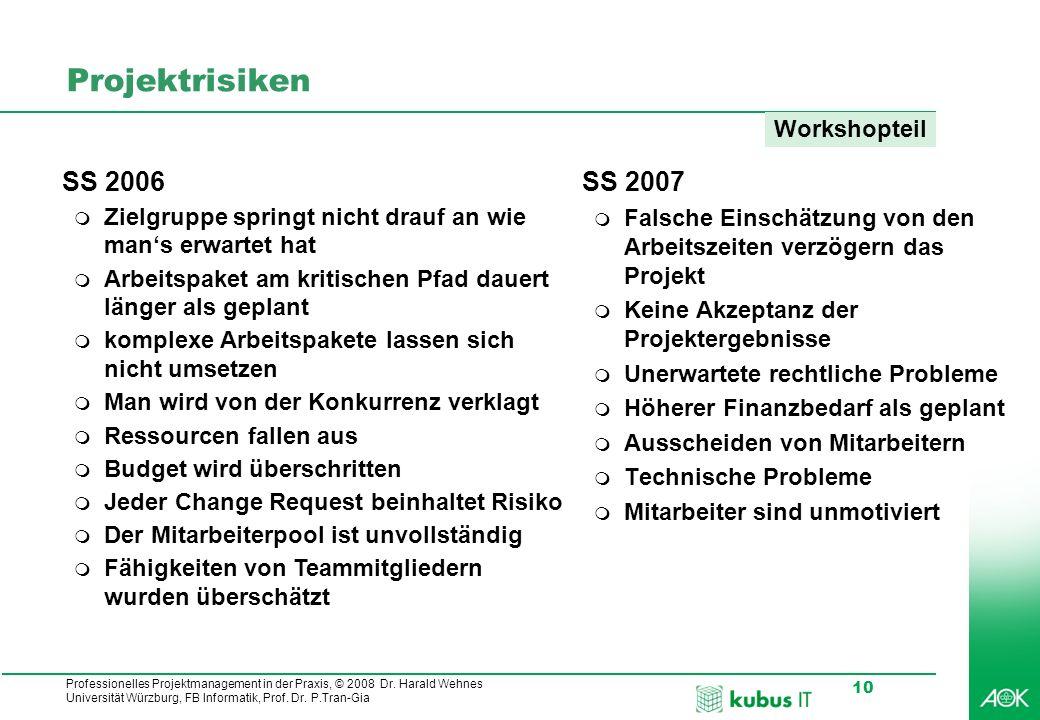 Projektrisiken SS 2006 SS 2007 Workshopteil
