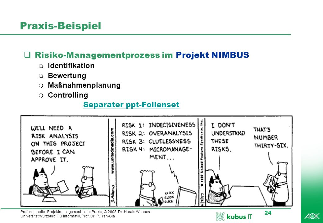 Praxis-Beispiel Risiko-Managementprozess im Projekt NIMBUS