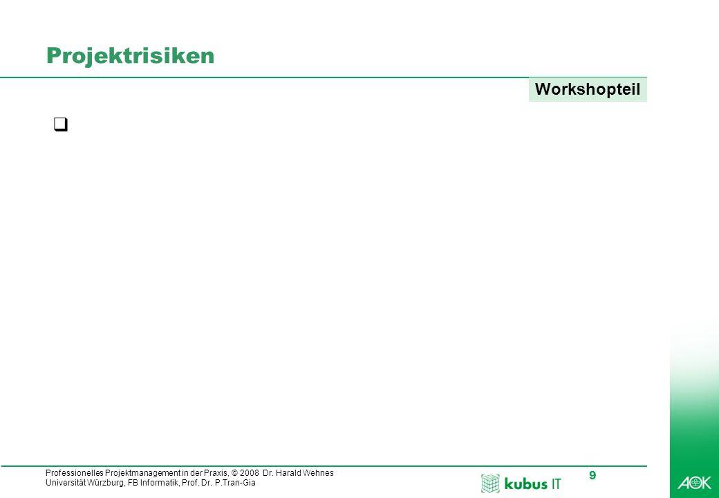 Projektrisiken Workshopteil Welche Projektrisiken haben Ihre Projekte