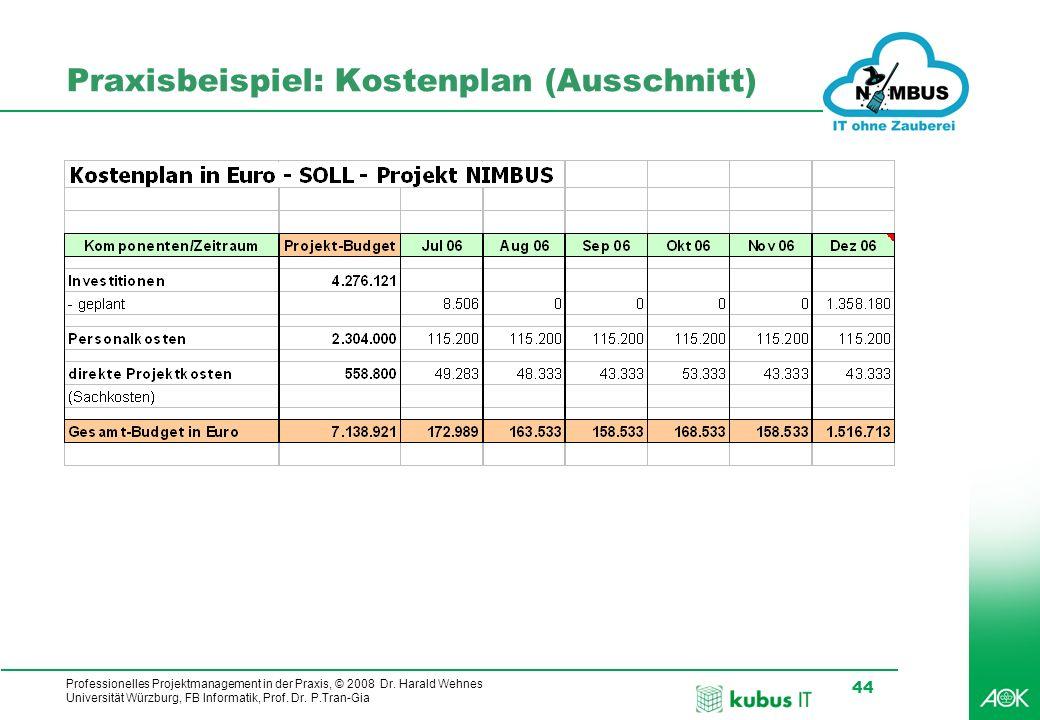 Praxisbeispiel: Kostenplan (Ausschnitt)