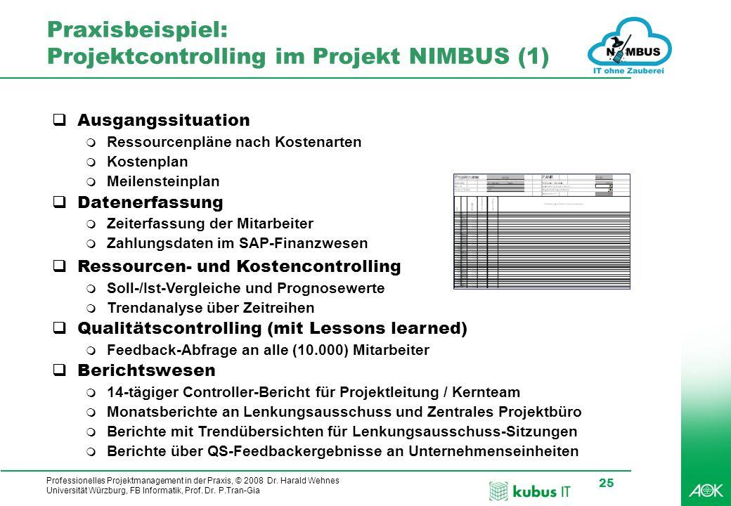Praxisbeispiel: Projektcontrolling im Projekt NIMBUS (1)